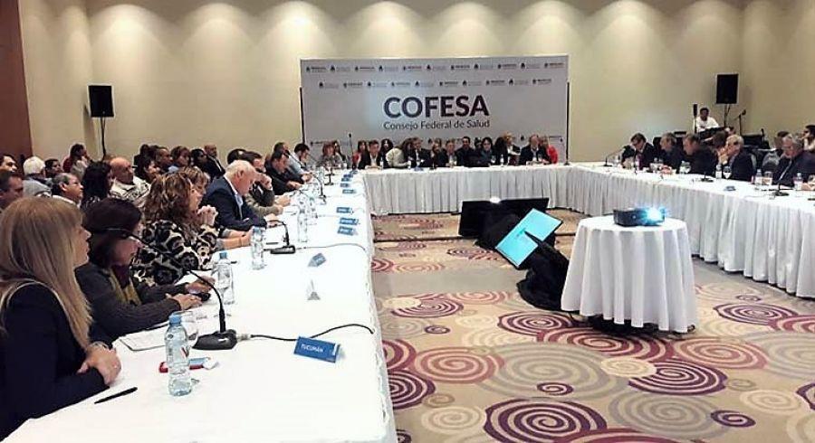 Culminó el Consejo Federal de Salud en Mendoza